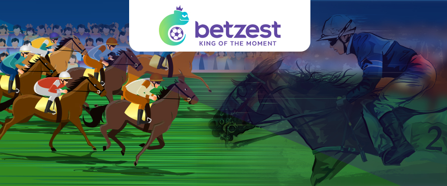 Online Virtual Horse Race Betting