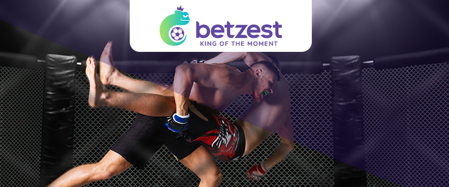Online MMA Betting